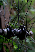 Profile mini rr hub, no disk 20mm ft, Arrow FRX ft rim, Atomlab pimplite rr, dt revolution spokes. Schwalbe tabletop ft tire, Primo Dirtmonster rr, tubes and strips $350