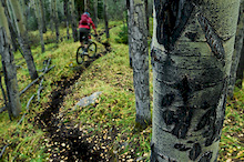More beauty singletrack.